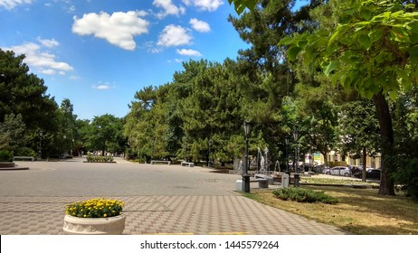 Wide, paved alley with old, tall deciduous & coniferous trees on a sunny day. Spacious Parkovaya alley (Park alley) in Novorossiysk in summer.
