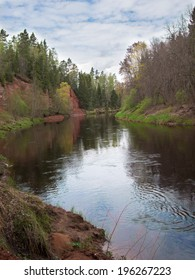 Wide river with pine forest on the sky background