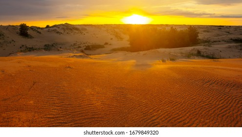 wide sandy desert at the sunset