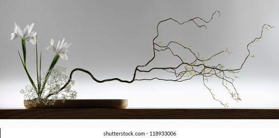 wide screen japanese Ikebana