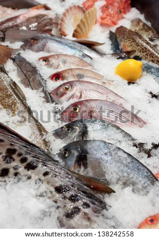 a8fc7c403a51 Wide Selection Fish On Seafood Market Stock Photo (Edit Now ...