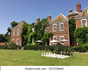 A wide shot of a chess set on the grass near brown houses with climbing plants