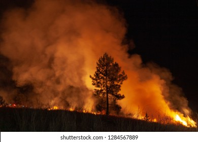 Wide shot of raging wildfire grassfire with emergency vehicle lights in background. Inspiration image for bushfire warning, summer bushfire warning poster or meme in portrait format