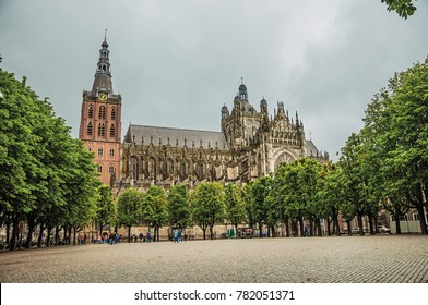 Wide square with cobblestone and trees in front of St. John's Cathedral in a cloudy day at s-Hertogenbosch. Gracious historical city with vibrant cultural life. Southern Netherlands.