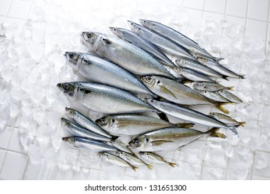 A wide variety of raw fish
