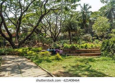 Wide view of green garden with grass, trees, plants, shadows and pathway, Chennai, Tamil nadu, India, Jan 29 2017 with copy space