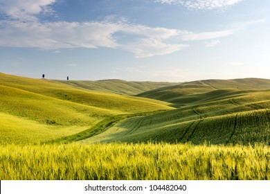 Wide view over the green rolling hills of the Tuscan countryside in Italy