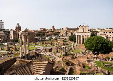 Wide View of the Roman Forum,