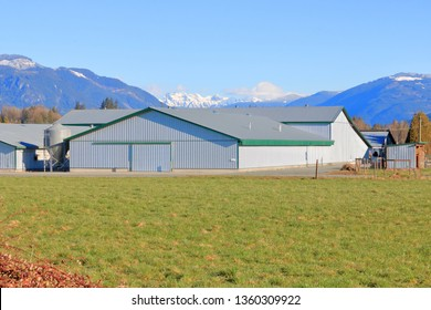 Wide view of various modern farm buildings constructed with sturdy metal sheeting and used for various agricultural requirements.