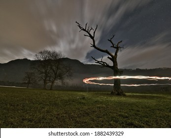 Wideangle view of illuminated bare tree against cloudy nightsky