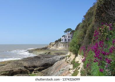 Wild atlantic west coast near Royan. Saint-Palais, Charentes-Maritimes, France