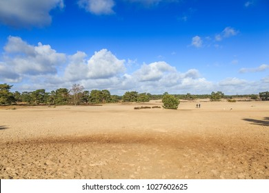 Wild bald and  by wind moving sand drifts the Soester Duinen in the  Dutch province of Utrucht on a ridge  called the Utrechtse heuvelrug cover sand areas occur in the ice age