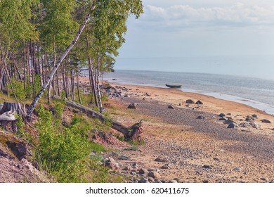 Wild beach of the Baltic sea in spring
