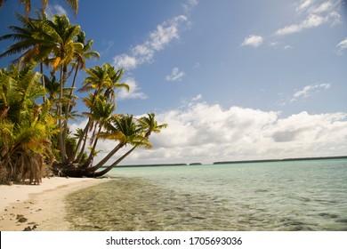 Wild beach in French Polynesia