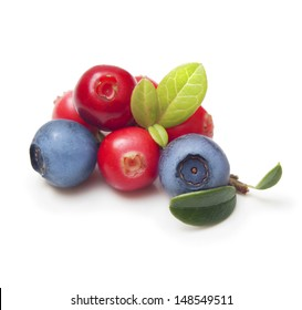 Wild berry fruits isolated on white background.