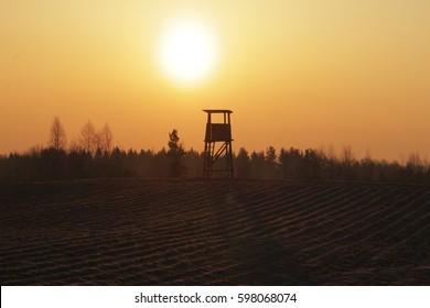 wild boar hunting tower