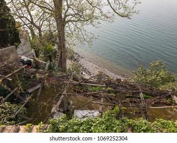 Wild Bracciano lake