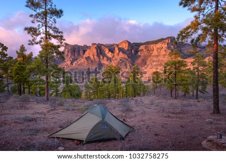 Wild c&ing tent in Canary Island Gran Canaria. Green tent in pine forest with sun & Wild Camping Tent Canary Island Gran Stock Photo (Edit Now ...