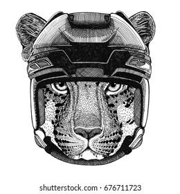 Wild cat Leopard Cat-o'-mountain Panther Hockey image Wild animal wearing hockey helmet Sport animal Winter sport Hockey sport