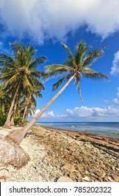 Wild coast on uninhabited island in the Indian Ocean, Maldives