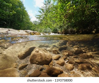 Wild creek with green vegetation and rocks with fish underwater, split view above and below water surface, La Muga, Girona, Alt Emporda, Catalonia, Spain