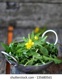 wild dandelion leaf in to the metallic bowl