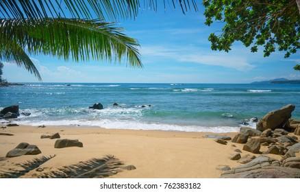 Wild deserted beach. Phuket island, Thailand