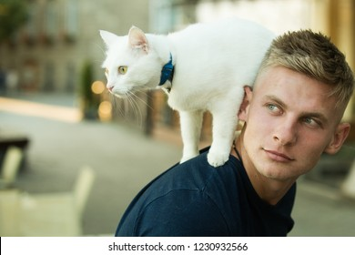 Wild and domestic at the same time. Michael Showalter. Muscular man hold cute pedigree cat. Cat stands on back of his owner. Happy cat owner with muscular look. Happy man on walk with cat pet.