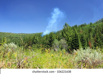 Wild fire burning in a forest in Utah.