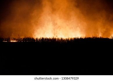 Wild fire flames and smokes around an urban area at night blurry photo