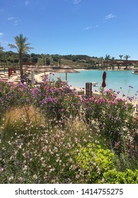 wild flower garden and swimming pool in Sotogrande, Spain