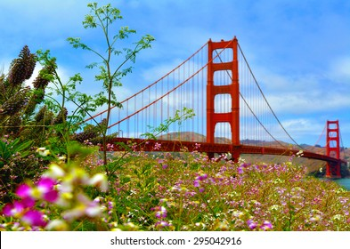 Wild flowers blossom at the Golden Gate Bridge in San Francisco, California, USA.The Golden Gate Bridge is possibly the most beautiful, and certainly the most photographed, bridge in the world.