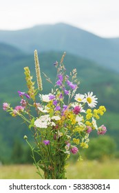 Wild flowers bouquet over mountains background.