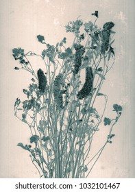 Wild flowers. Daguerreotype style. Film grain. Vintage photography. Botanical negative x-rays scan. Canvas texture background. Vintage conceptual old retro aged postcard. Sepia