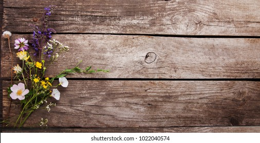 Wild flowers on old grunge background wooden  ( lupine dandelions thyme mint bells rape).