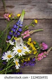 Wild flowers on old grunge blue wooden background (chamomile lupine dandelions thyme mint bells rape).