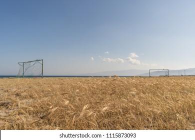Wild football field