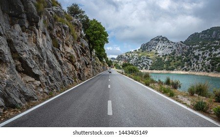 Wild goat on the highway in the Tramuntana mountains in Mallorca, Spain