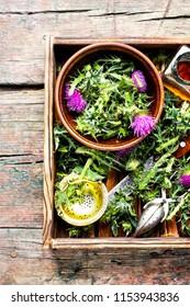 Wild healing herbs thistle in mortar.Herbal medicine.