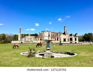 Wild horses in front of Dungeness ruins, old Carnegie mansion on Cumberland Island, Georgia