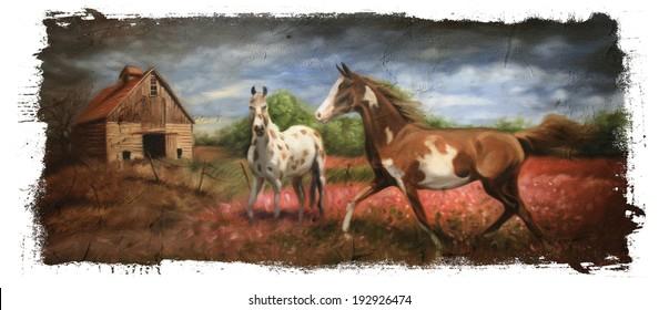 wild horses Torn Edges