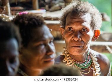 WILD JUNGLE, IRIAN JAYA, NEW GUINEA, INDONESIA - MAY 15, 2016: Portrait of a papuan woman from a korowai tribe. New Guinea Wild Jungle . May 15, 2016