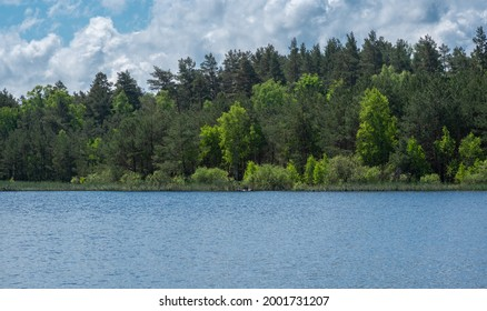 Wild lake in the forest  - Shutterstock ID 2001731207