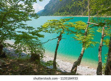 wild landscape lake sylvenstein with view to the turquoise water through green branches