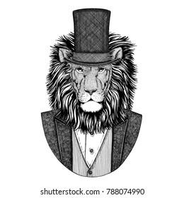 Wild Lion. Animal wearing jacket with bow-tie and silk hat, beaver hat, cylinder top hat. Elegant vintage animal. Image for tattoo, t-shirt, emblem, badge, logo, patch