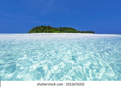 Wild Maldives island with bounty beach and azure crystal water, untouched maldivian nature for travel destinations