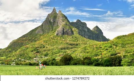 Wild Mauritius mountains