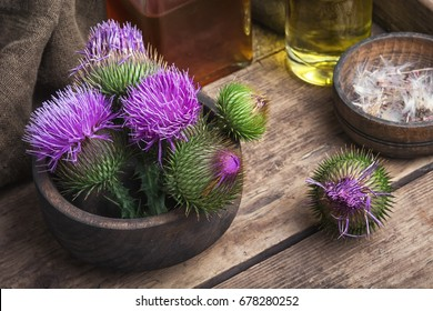 Wild medicinal plant thistle on wooden background.Milk Thistle plant