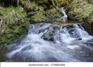 The wild mountain stream of Ravenna in the Black Forest flows over several waterfalls and cascades into the Ravenna Gorge, which is a popular excursion and hiking area in southwestern Germany.