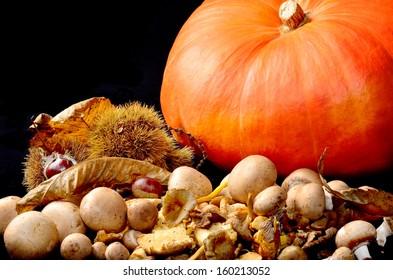 Wild mushrooms with chestnuts and orange pumpkin on black background